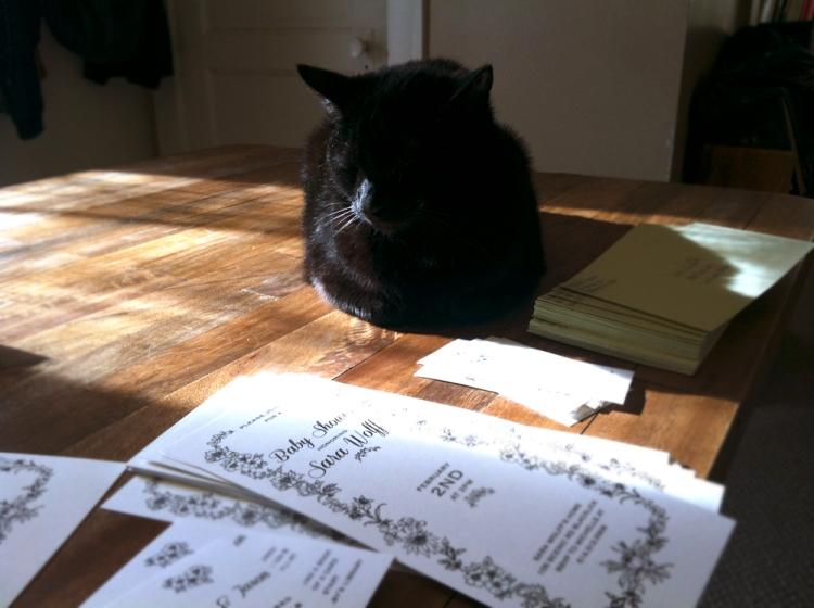 Cat Invitation Specialist