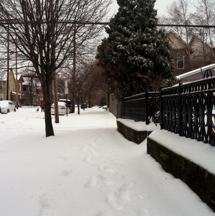 tlh_snow1
